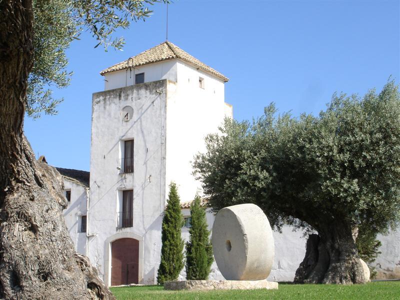 Mas d'Alerany, la Serra d'Almos, Tivissa
